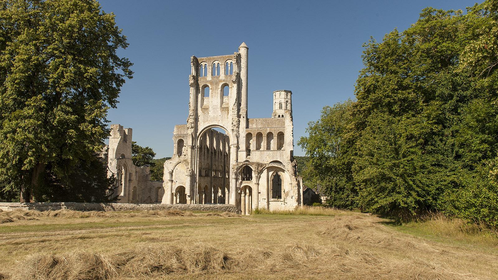 Jumièges: die Ruine der Abteikirche. Foto: Hilke Maunder