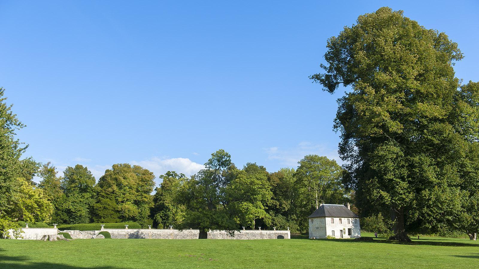 Jumièges: der große Park der Abtei. Foto: Hilke Maunder