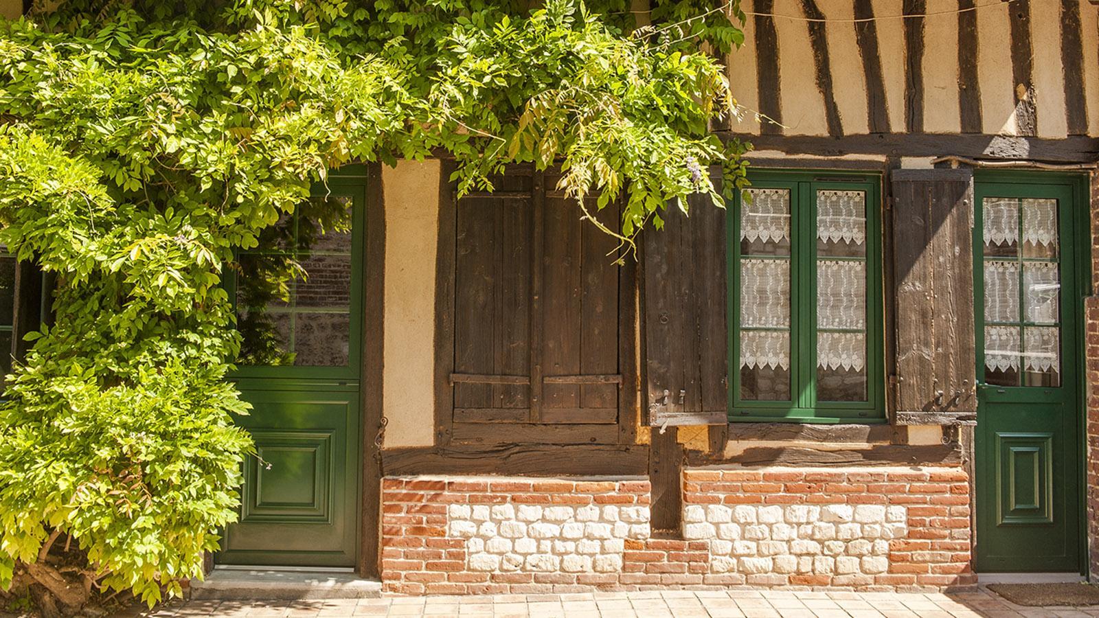 Jumièges: Im Mai blüht die Glyzenie vor diesem Wohnhaus. Foto: Hilke Maunder