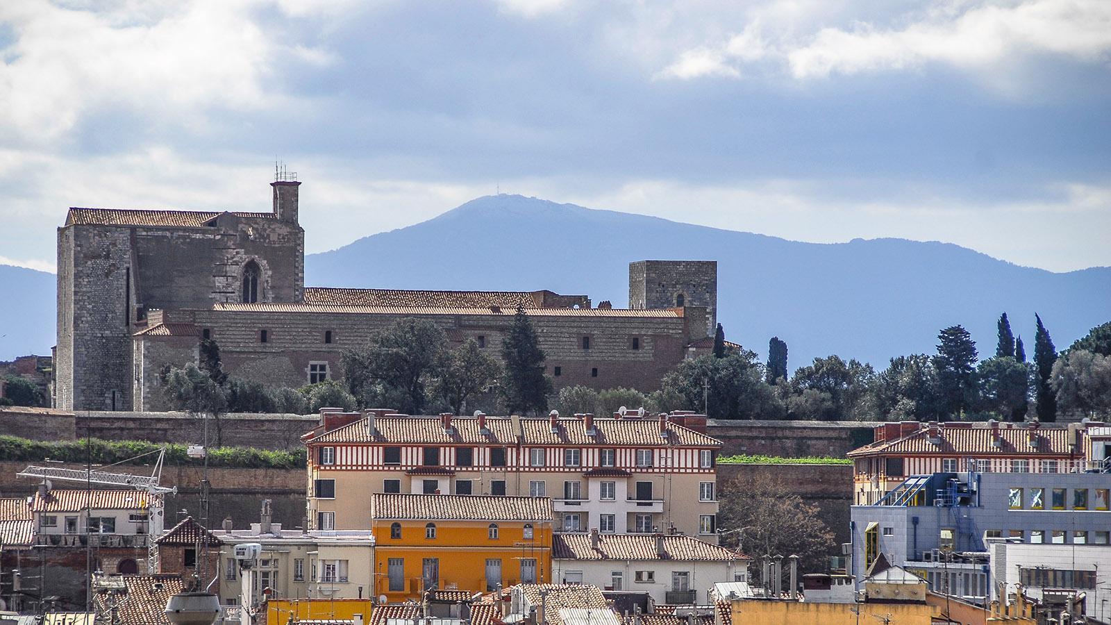 Perpignan: der Palast der Könige von Mallorca. Foto: Hilke Maunder