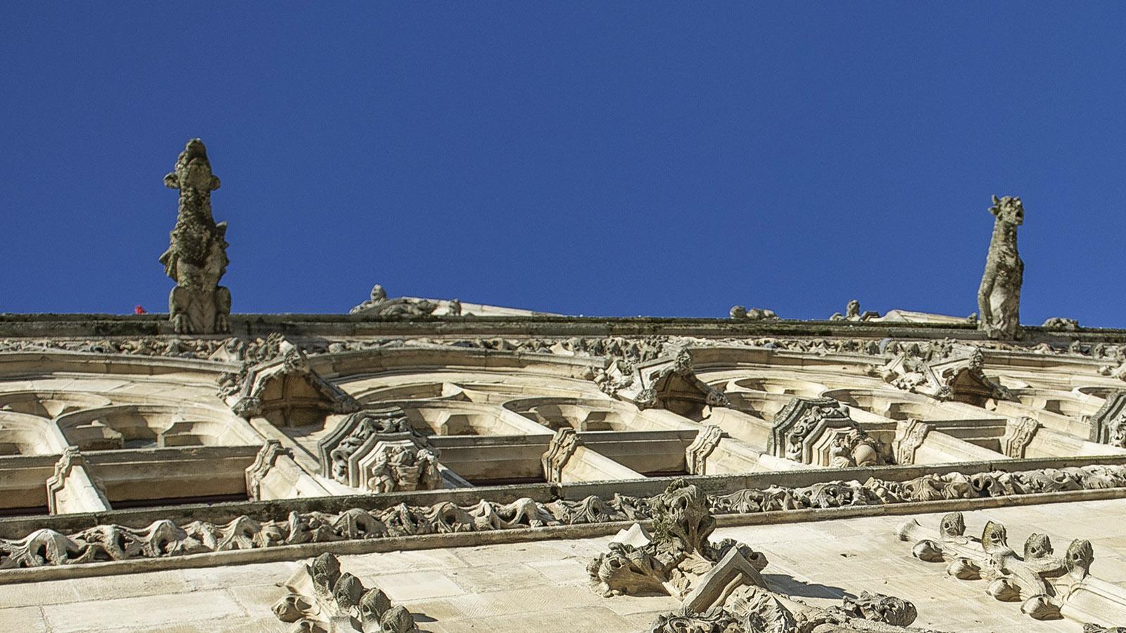 Saint-Quentin: Wasserspeier schmücken das Rathausdach. Foto: Hilke Maunder