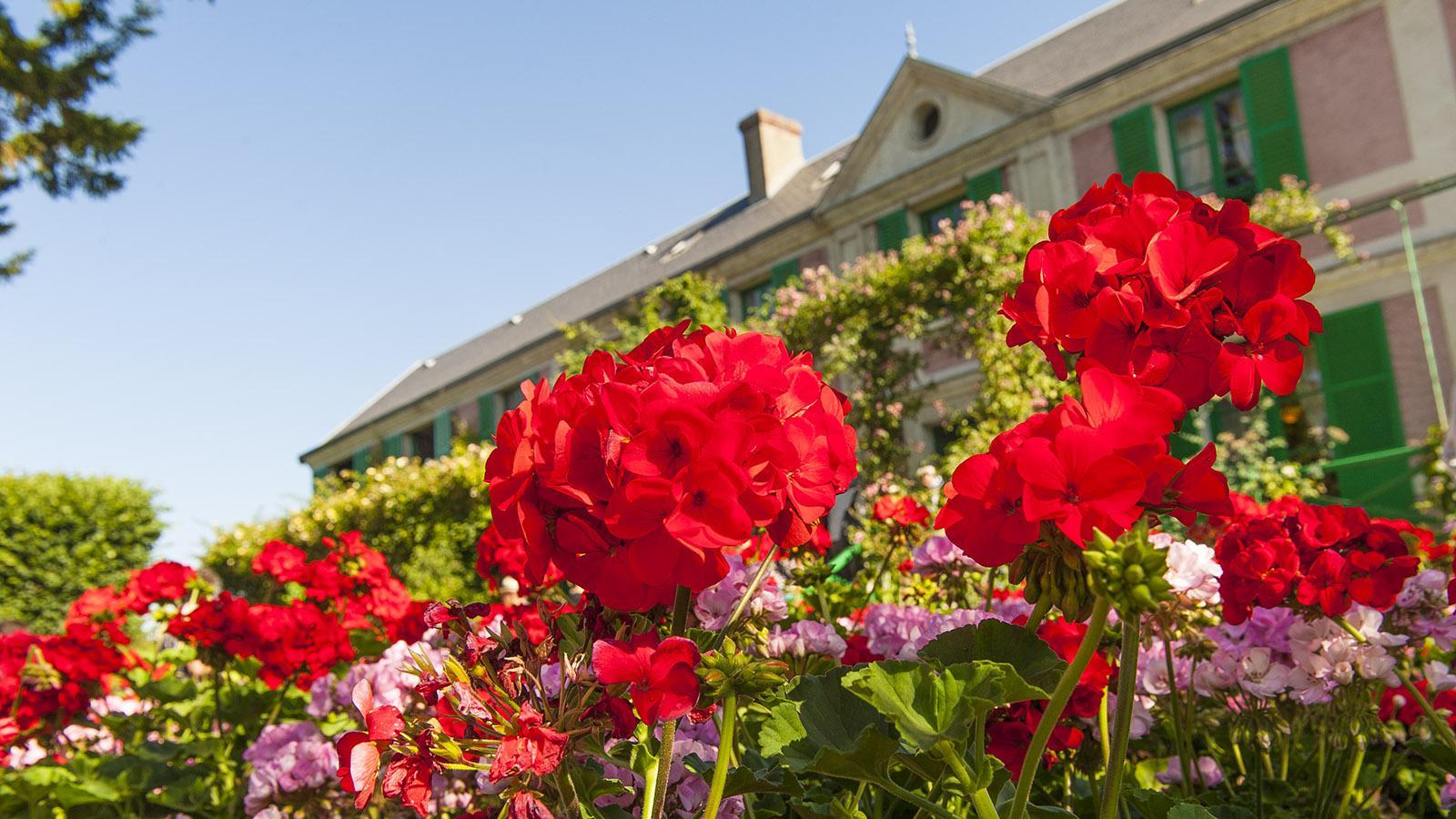 Der Garten von Monet in Giverny. Foto: Hilke Maunder