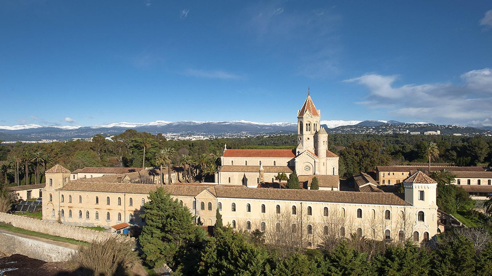Die Abtei von Saint-Honorat mit den Seealpen am Horizont. Foto: Hilke Maunder