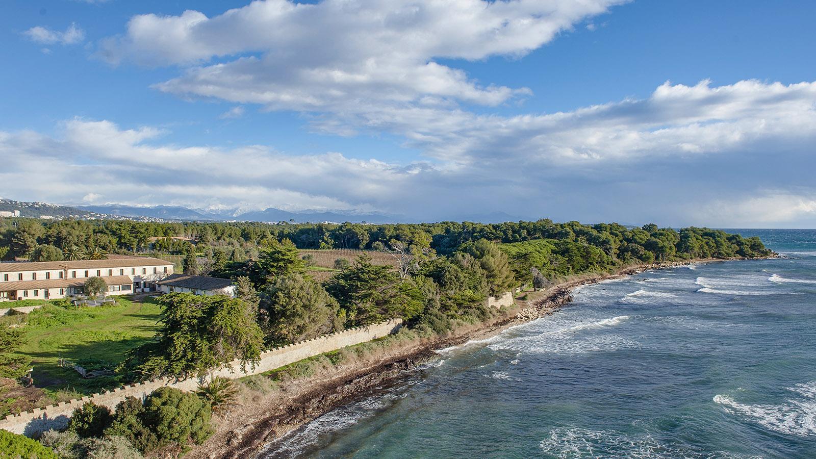 Die Klosterinsel Saint-Honorat. Foto: Hilke Maunder