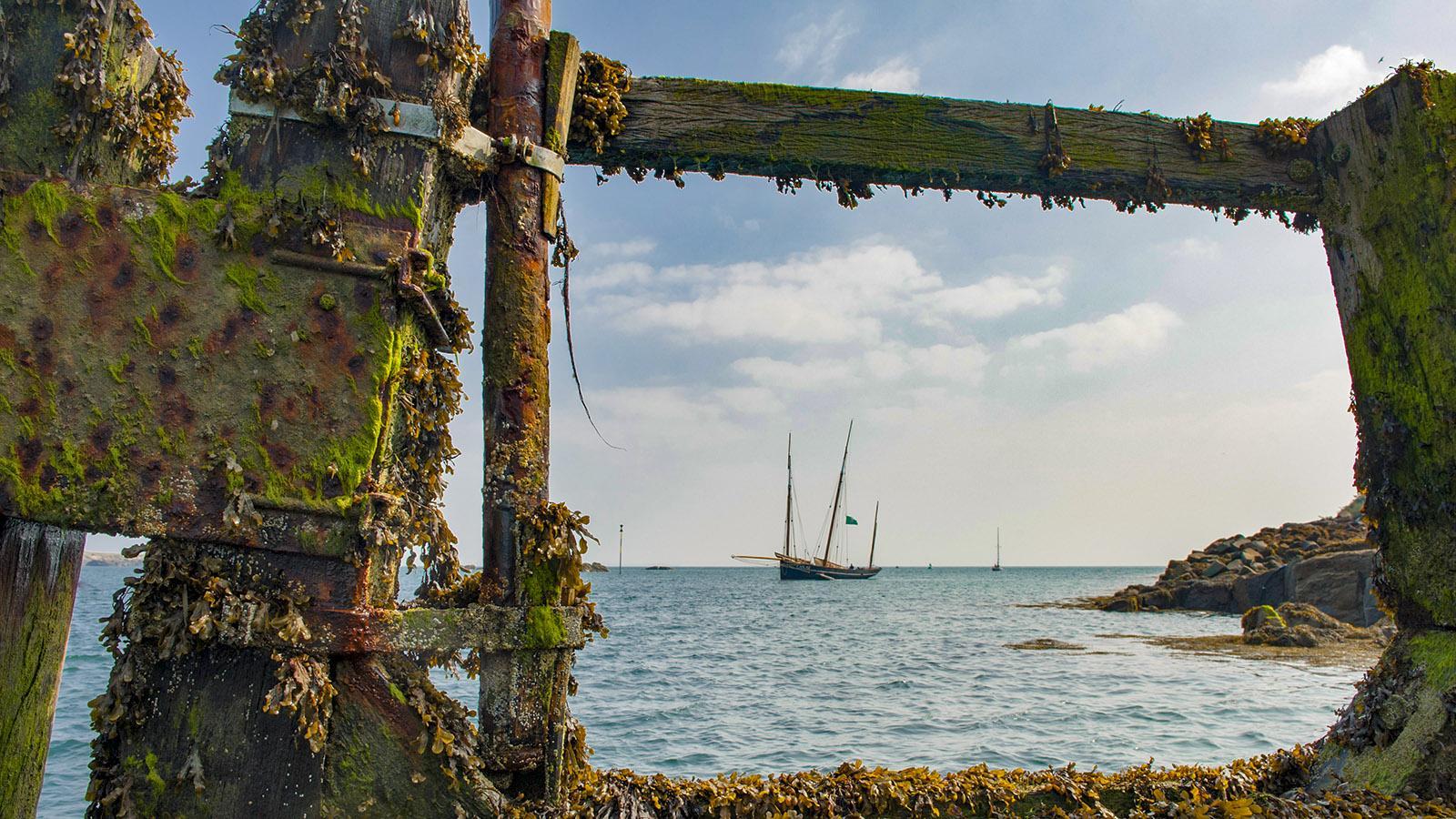 Cuisine Corsaire: Die Bisquine La Cancalaise vor den Îles Chausey. Foto: Hilke Maunder
