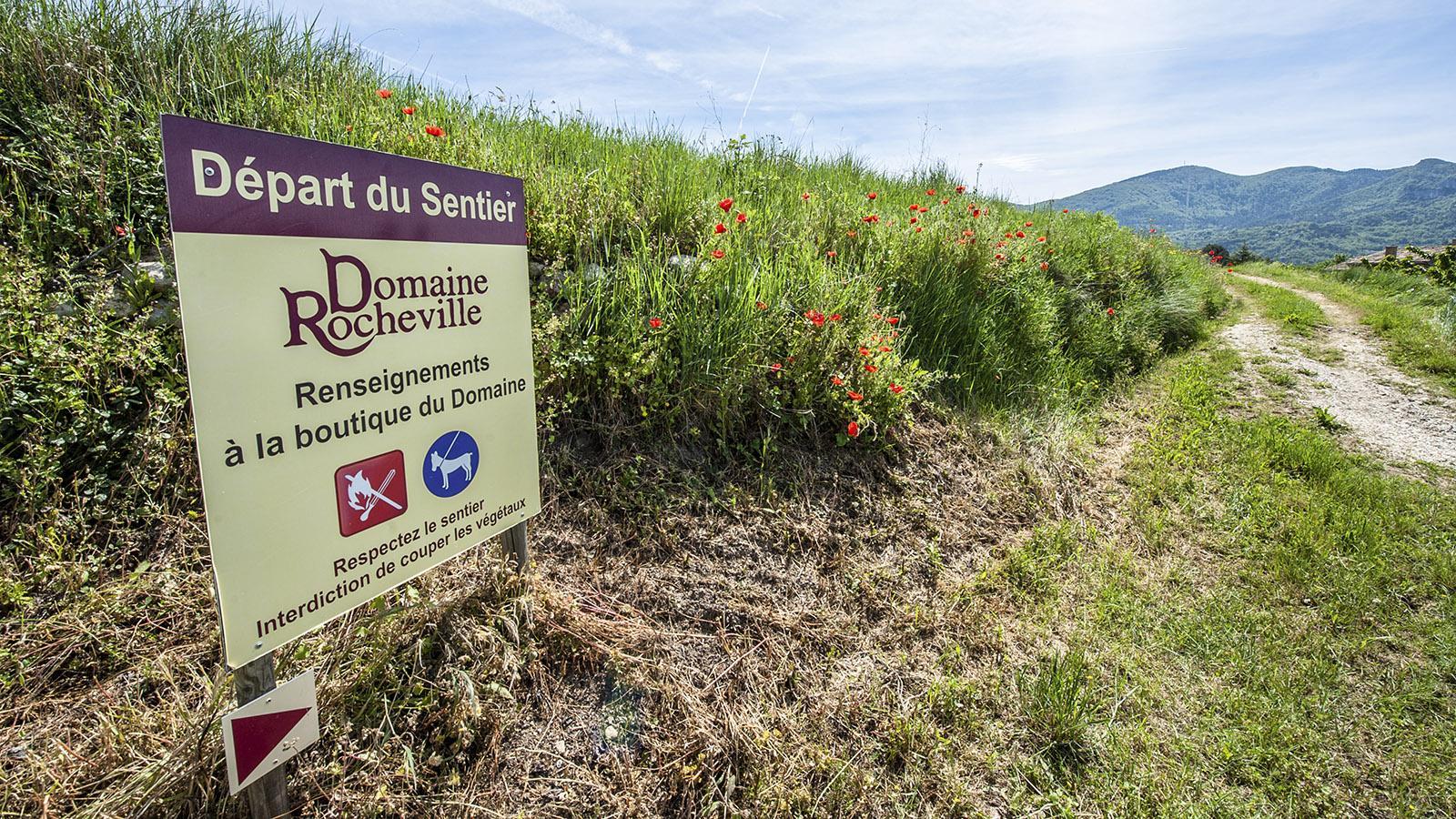 HIer beginnt die Rando Terroir der Domaine Rocheville. Foto: Hilke Maunder