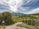 Unterwegs auf dem Naturlehrpfad der Domaine Rocheville. Foto: Hilke Maunder