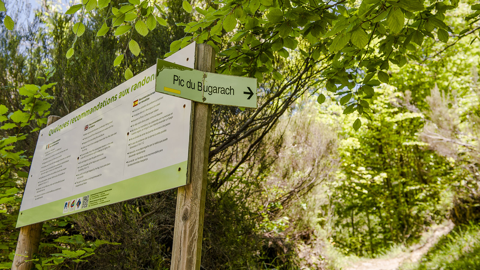 Pech de Bugarach: Start zum schwierigen Aufstieg... Foto: Hilke Maunder