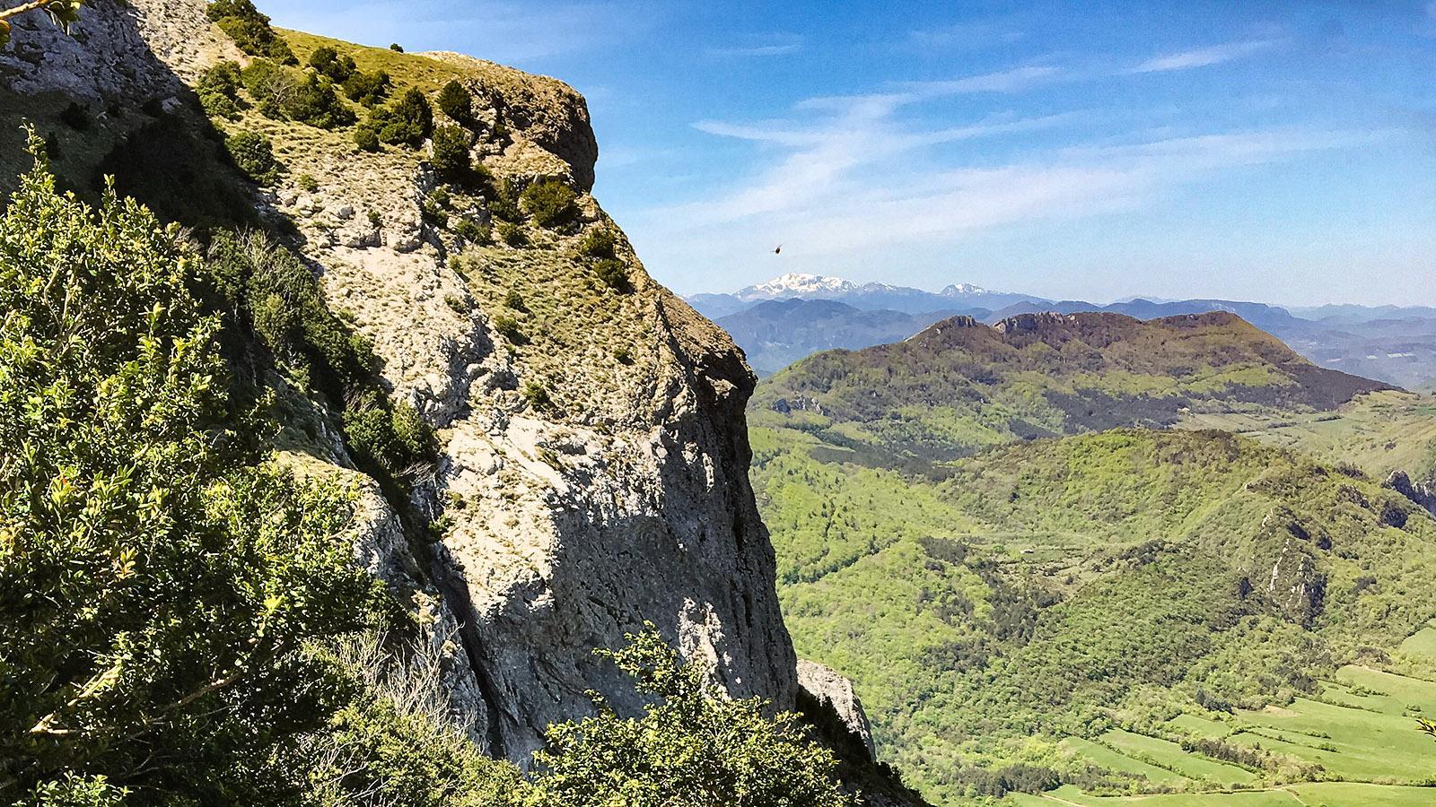 Pech de Bugarach: Weitblick oberhalb der Baumgrenze. Foto: Hilke Maunder