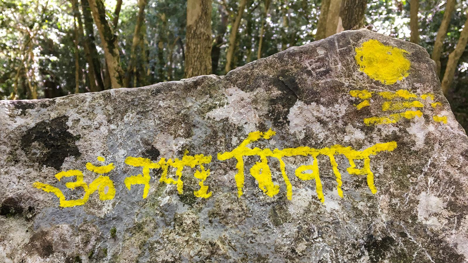Pech de Bugarach: Mitten im Bergwald: Devanagiri auf dem Stein - wer verrät mir, was dort steht? Foto: Hilke Maunder