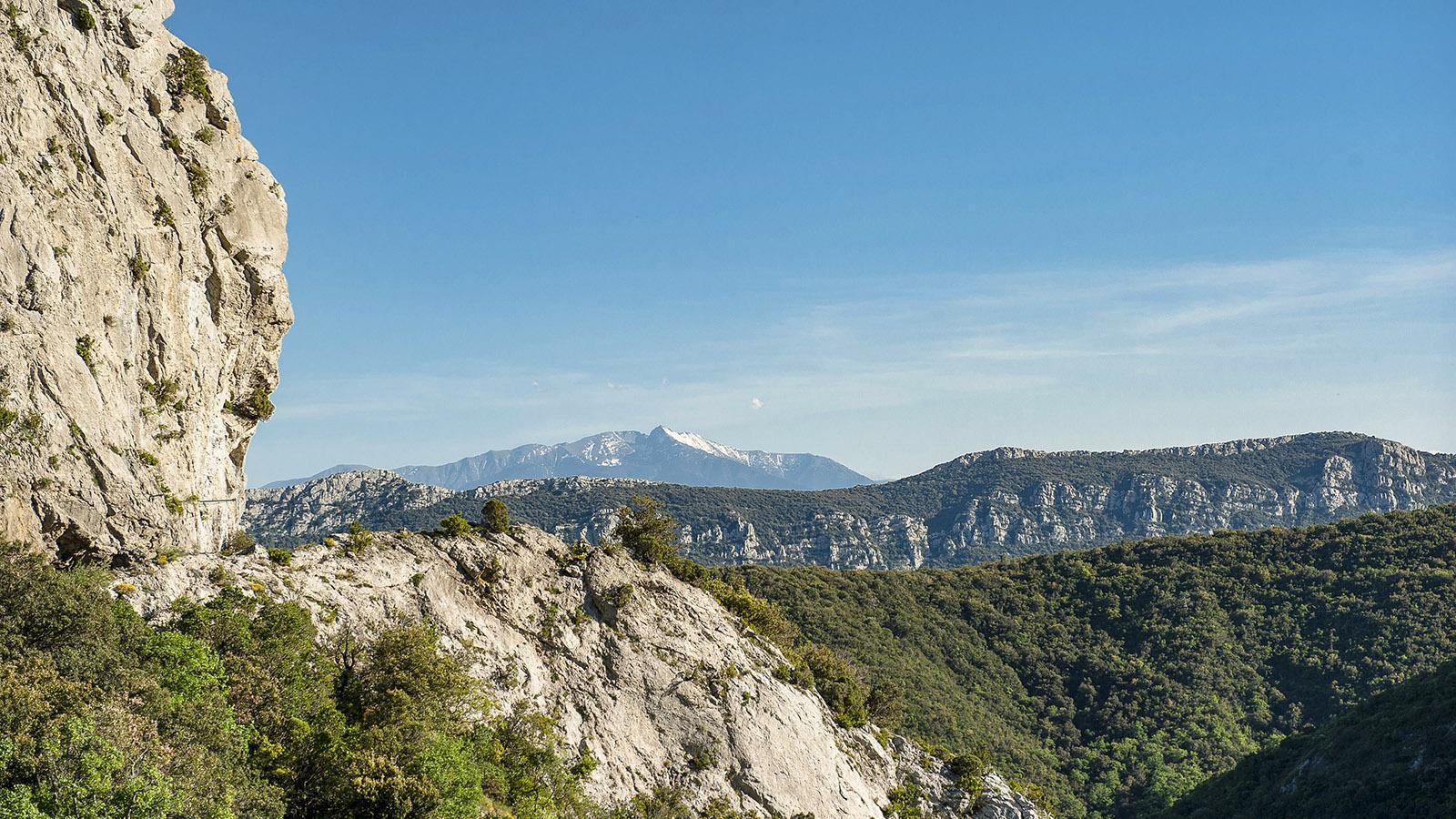 Gorges de Galamus: Blick vom Eingang der Schlucht gen Süden auf den Canigou. Foto: Hilke Maunder
