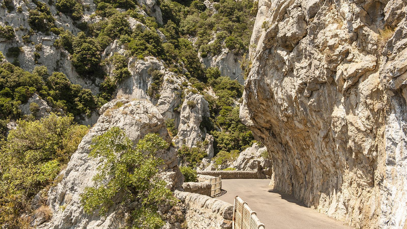 Die schmale Straße durch die Gorges de Galamus. Foto: Hilke Maunder
