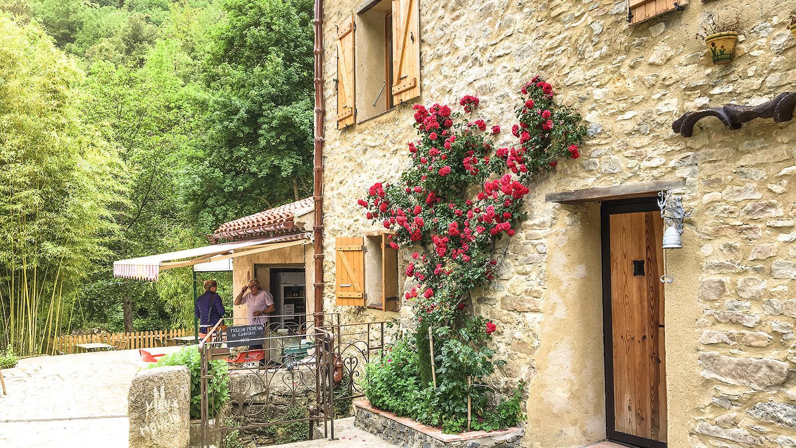 Le Vieux Moulin, ein charmanter Landgasthof am nördlichen Eingang der Gorges de Galamus. Foto: Hilke Maunder