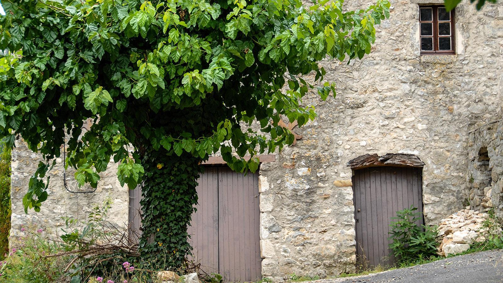 Ardèche, Vallée de la Tiourre. Foto: Hilke Maunder
