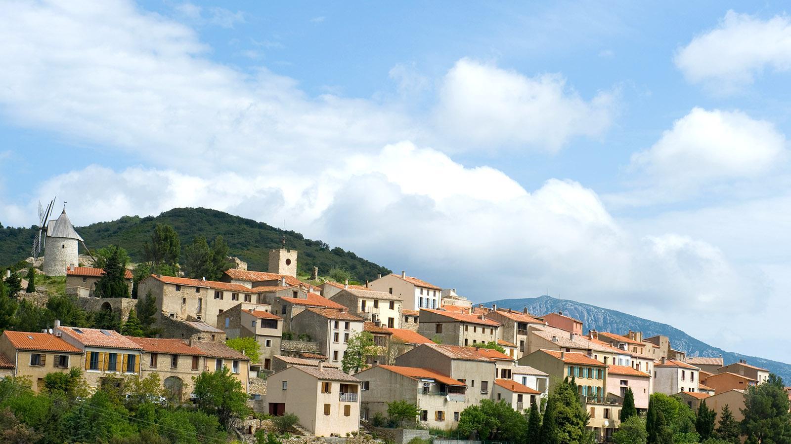 Zu Füßen der Katharer-Burg von Quéribus liegt in Aude das Dörfchen Cucugnan mit seiner bekannten Mühle. Foto: Hilke Maunder