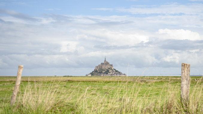 Der Mont-Saint-Michel ragt majestätisch am Horizont jenseits der Weiden auf, auf den Salzlämmer und Kühe weiden. Foto: Hilke Maunder