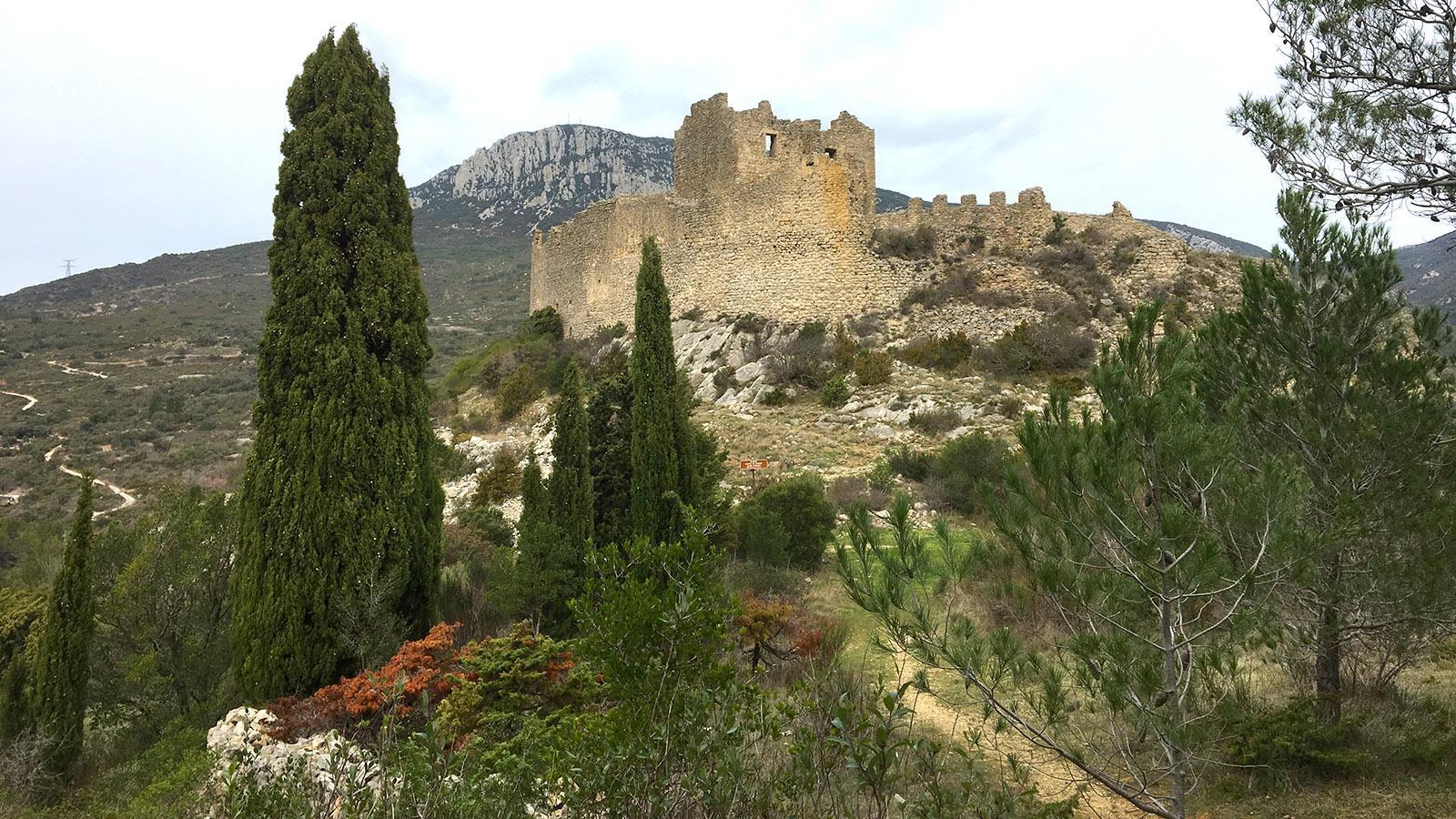 Auch im tiefsten Januar ein schönes Wanderziel: die Katharer-Burg von Padern. Foto: Hilke Maunder