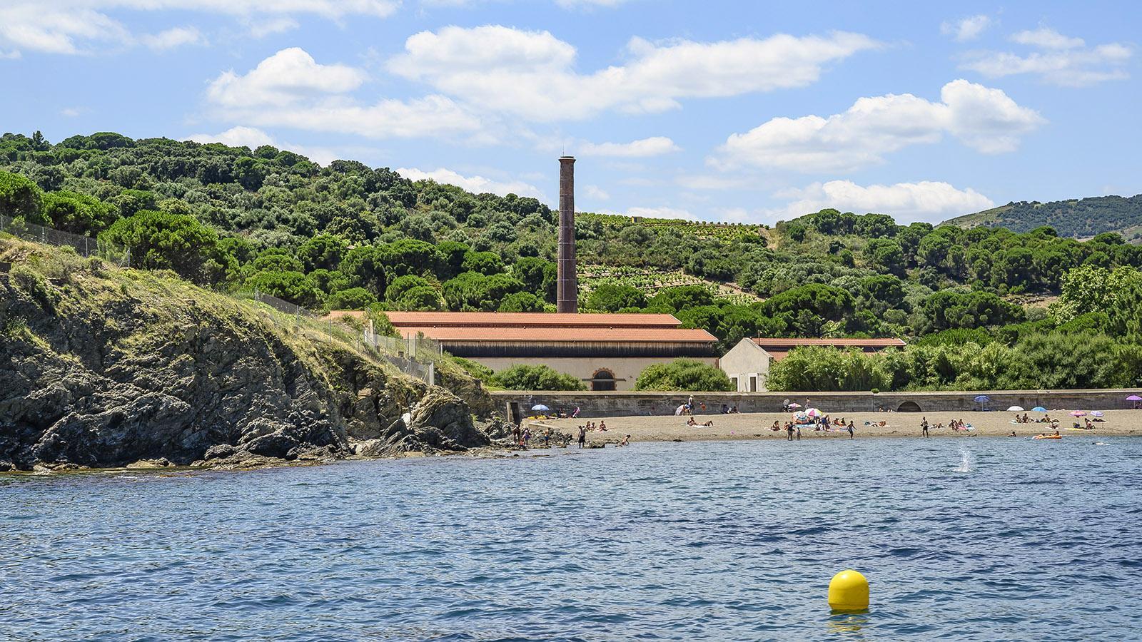 Die Dynamitfabrik vom Wasser aus. Foto: Hilke Maunder