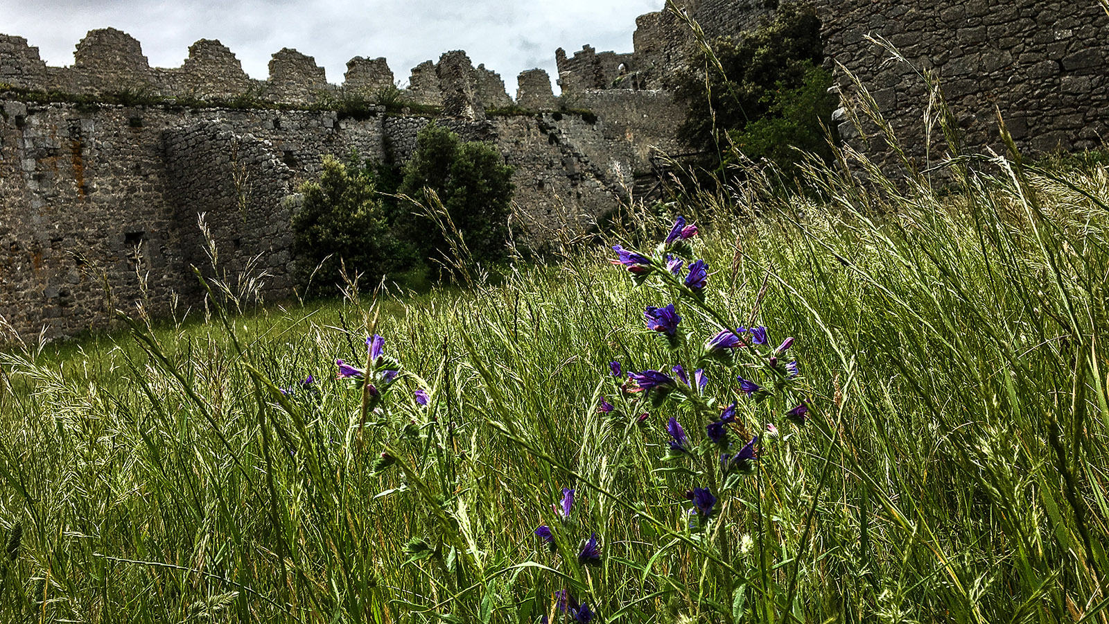 Sentier Cathare: Puilaurens. Foto: Hilke Maunder
