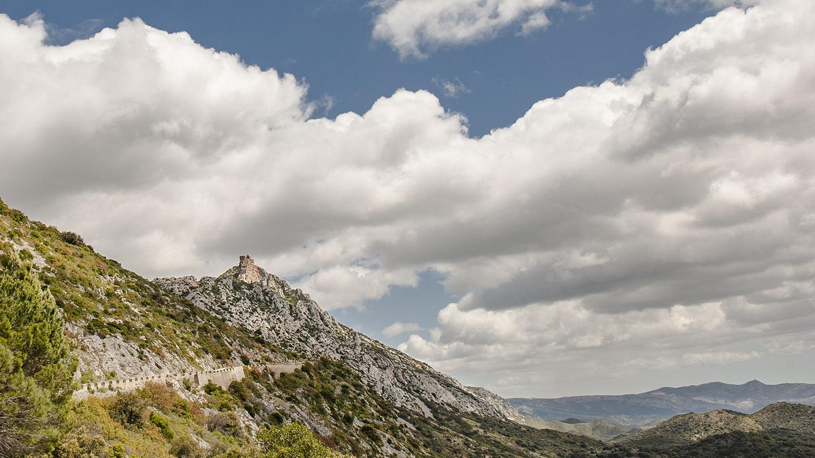 Sentier Cathare: Blick auf die Burg Quéribus von der Zufahrtsstraße von Maury aus. Foto: Hilke Maunder