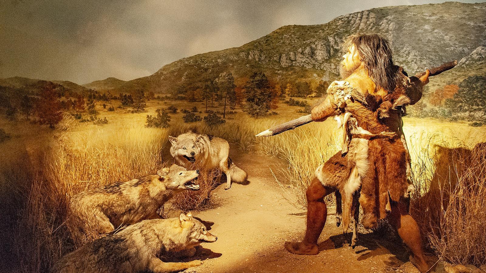 Bei der Jagd: der Mann von Tautavel. Foto: Hilke Maunder