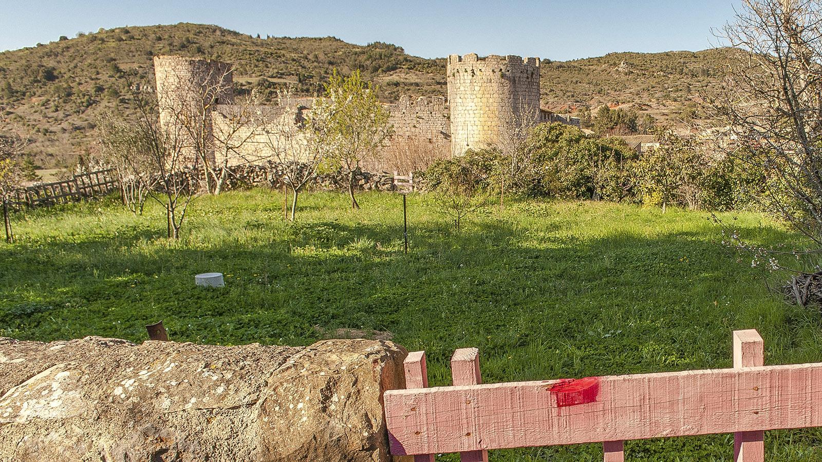 Sentier Cathare: die Katharerburg von Villerouge-Termenès. Foto: Hilke Maunder