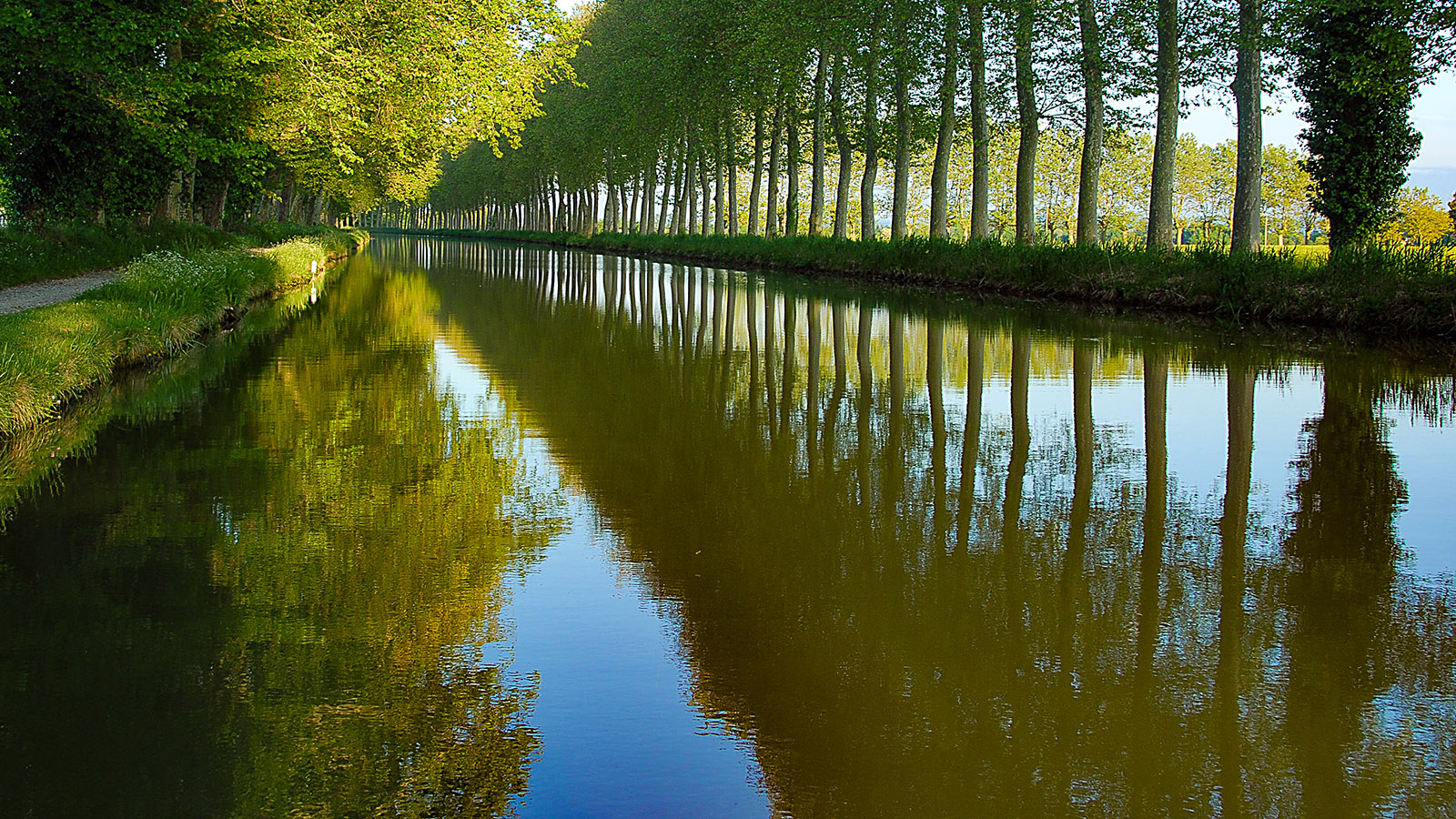Am Canal du Midi stehen die Platanen Spalier. Foto: Hilke Maunder