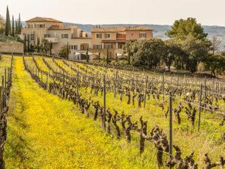 Séjours en Vignoble: La Coquillade. Foto: Hilke Maunder