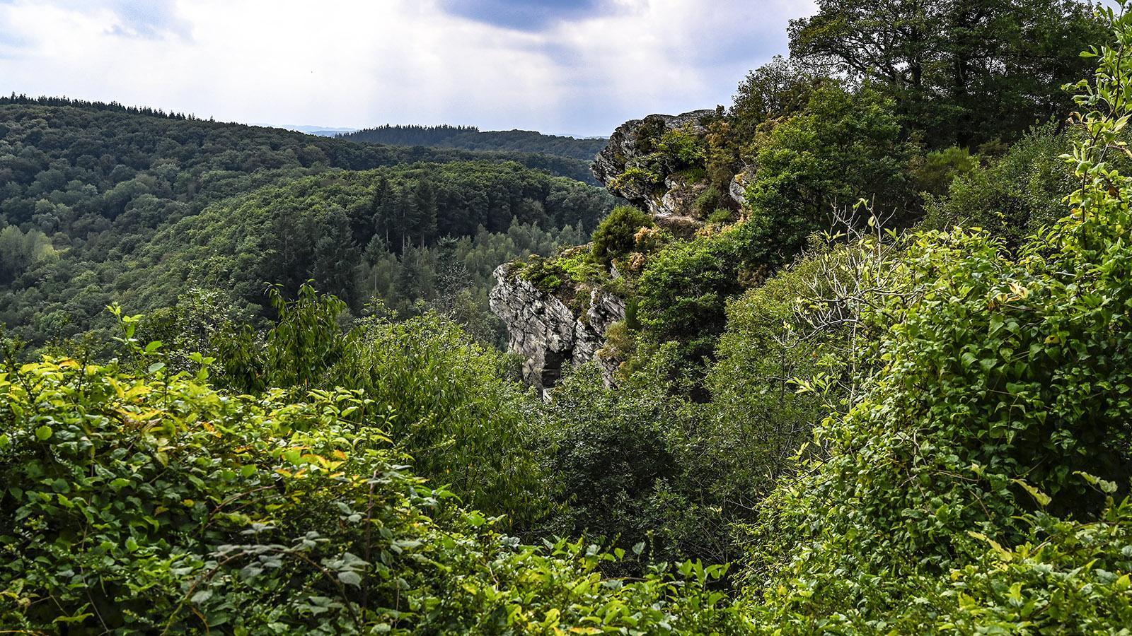 Faszinierend, die Felsen im Tal der Rouvre! Foto: Hilke Maunder
