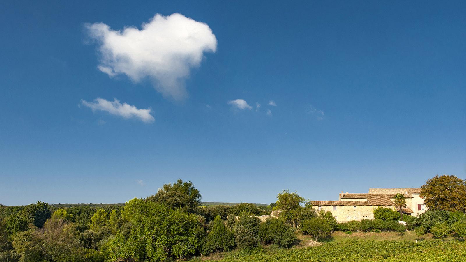 Sejours en Vignoble: auch möglich auf der Domaine de Notre Dame de Cousignac. Foto: Hilke Maunder
