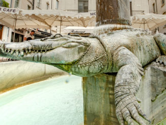 Nîmes: Krokodilbrunnen an der Place du Marché. Foto: Hilke Maunder