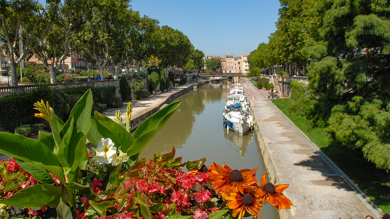 Narbonne: Canal de la Robine im Frühjahr. Foto: Hilke Maunder