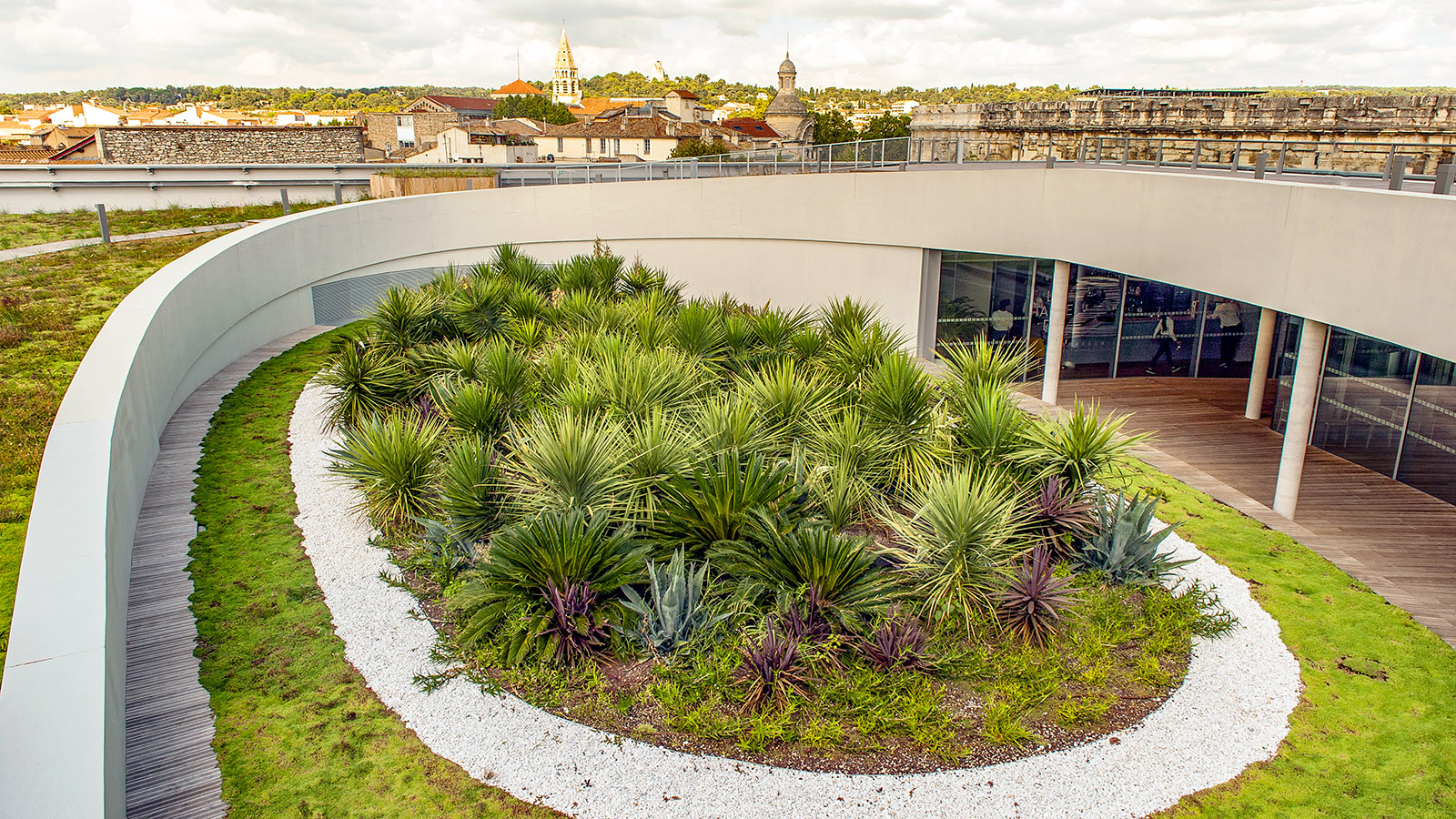 Nîmes: Dachgarten des Musée de la Romanité. Foto. Hilke Maunder