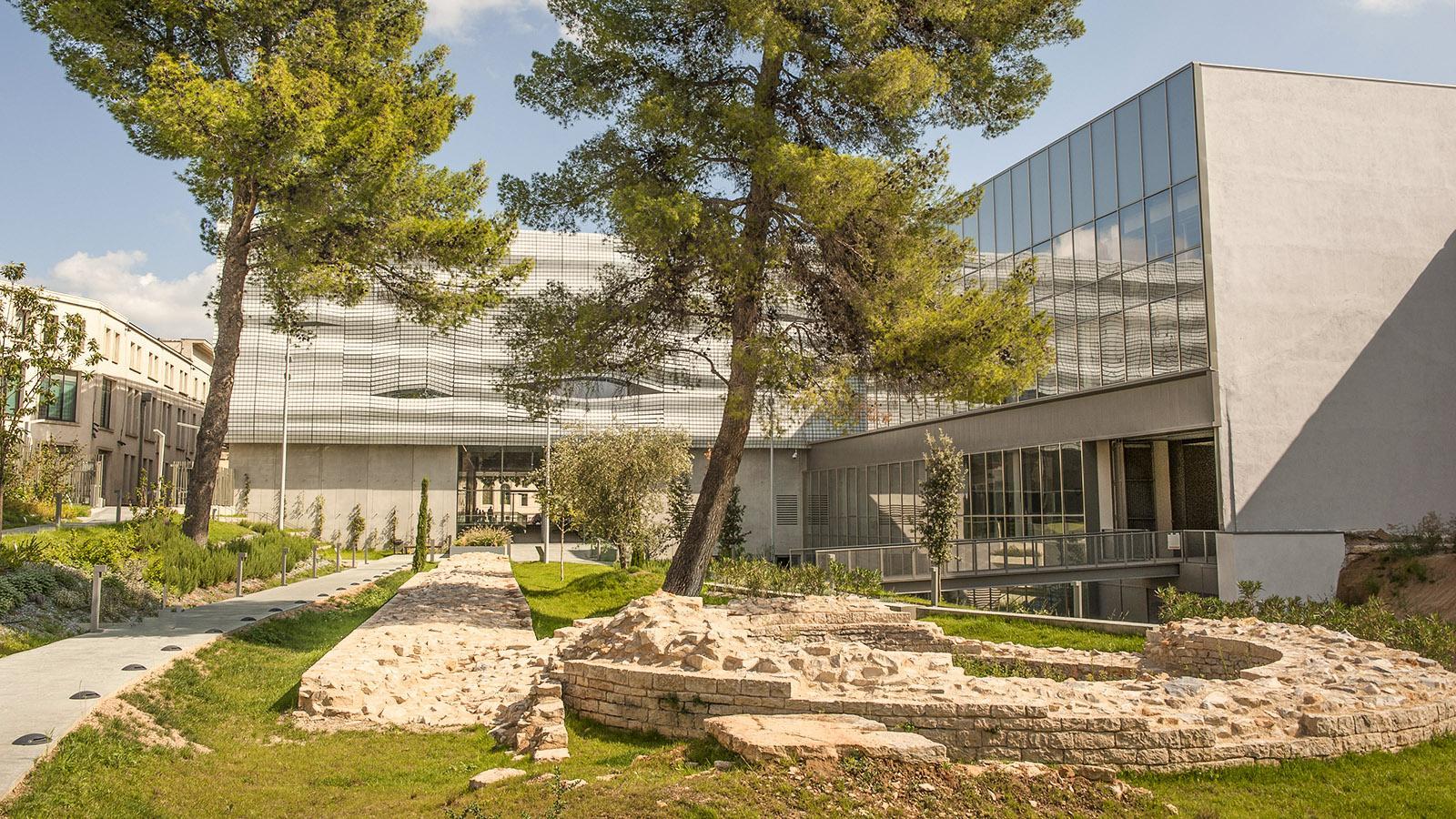 Nîmes: Garten des Musée de la Romanité. Foto: Hilke Maunder