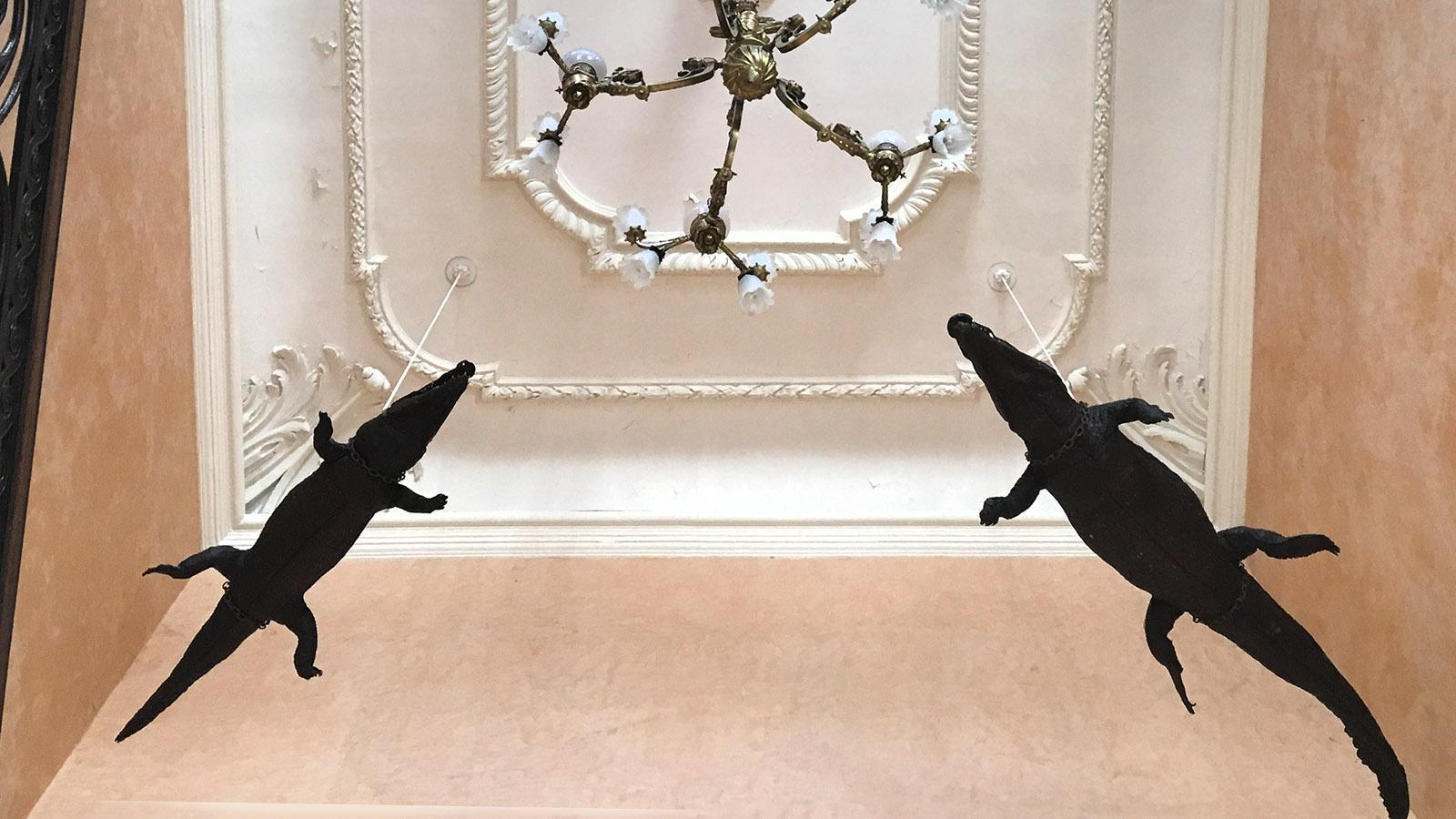 Das Krokodil von Nimes - gleich vier Mal hängt es im Rathaus unter der Decke. Foto: Hilke Maunder