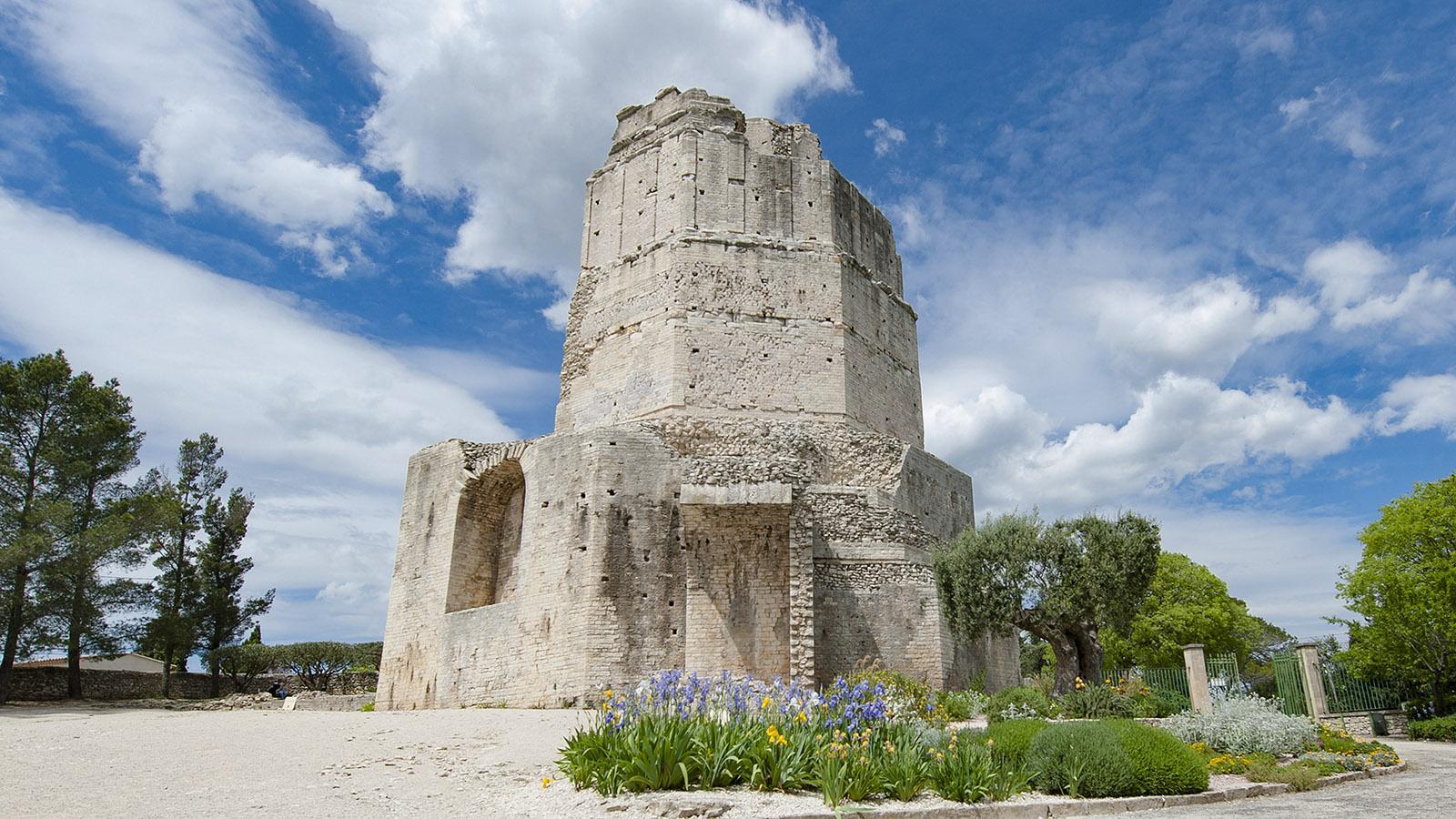 Die römische Tour Magne in den Jardins de la Fontaine von Nîmes. Foto: Hilke Maunder