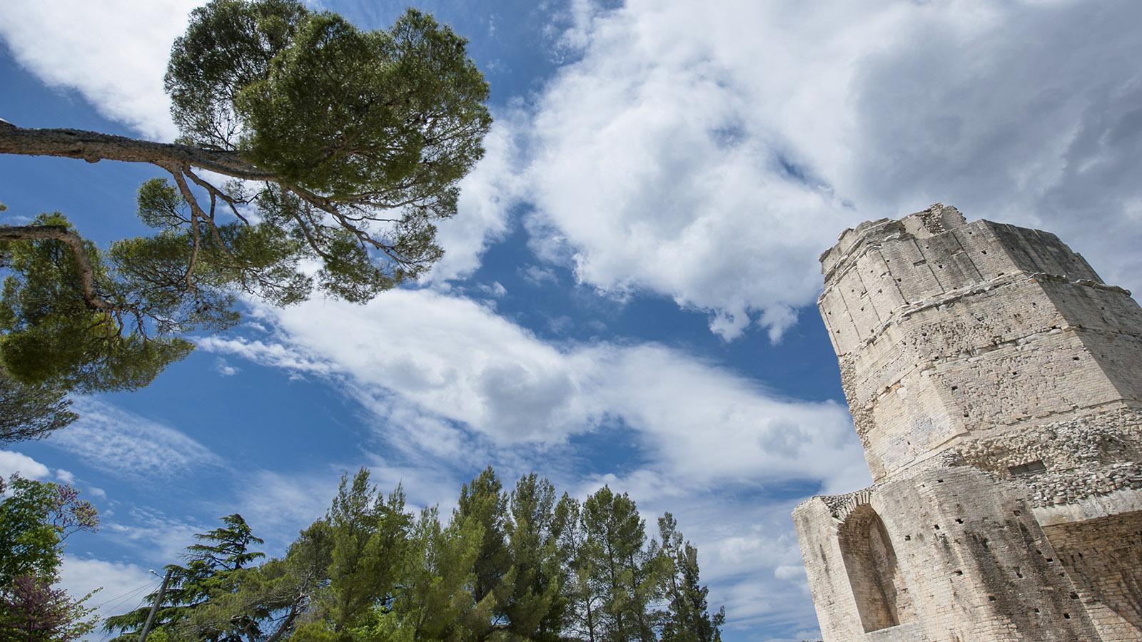 Die Tour Magne von Nîmes. Foto: Hilke Maunder