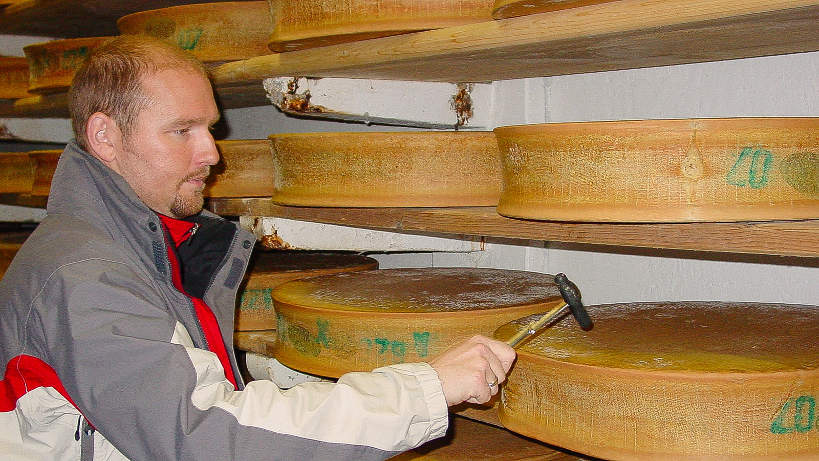 Les Sybelles: St-Sorlin-d'Arves: Fromagerie Cooperative de la Vallee des Arves, Leiter Thomas Airieu prüft mit einem kleinen Hämmerchen im Reifekeller die Qualität des Beaufort-Käse (A.O.C.). Foto: Hilke Maunder