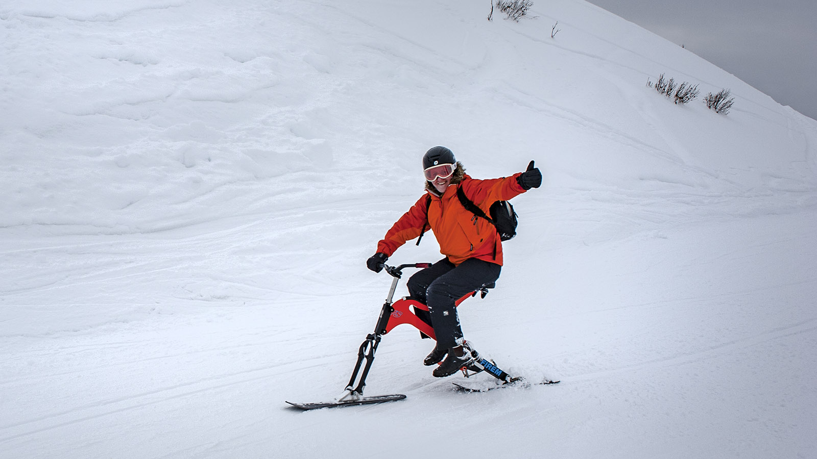 Skibiking in Le Grand Bornand. Foto: Hilke Maunder
