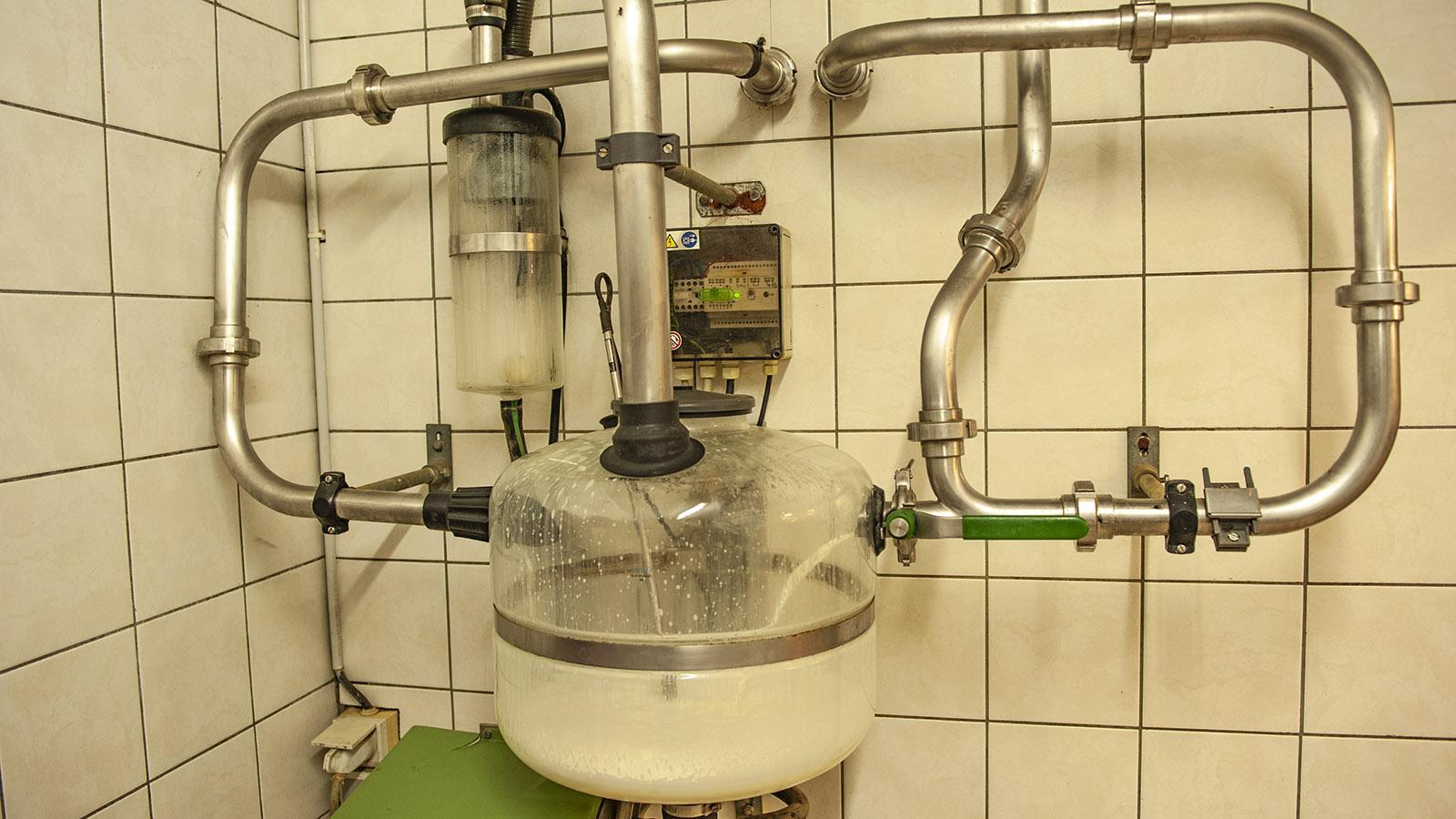 Abondance: Die abgepumpte Milch läuft nach dem Melken durch diesen Apparat hin zu den Käsekesseln.