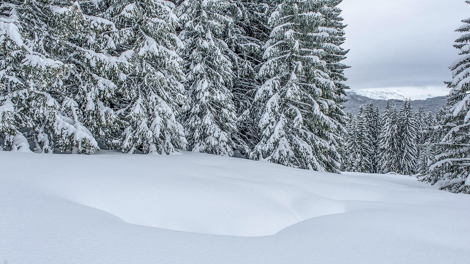 Schneeschuhwandern durch den Winterwald des Mont-Caly. Foto: Hilke Maunder