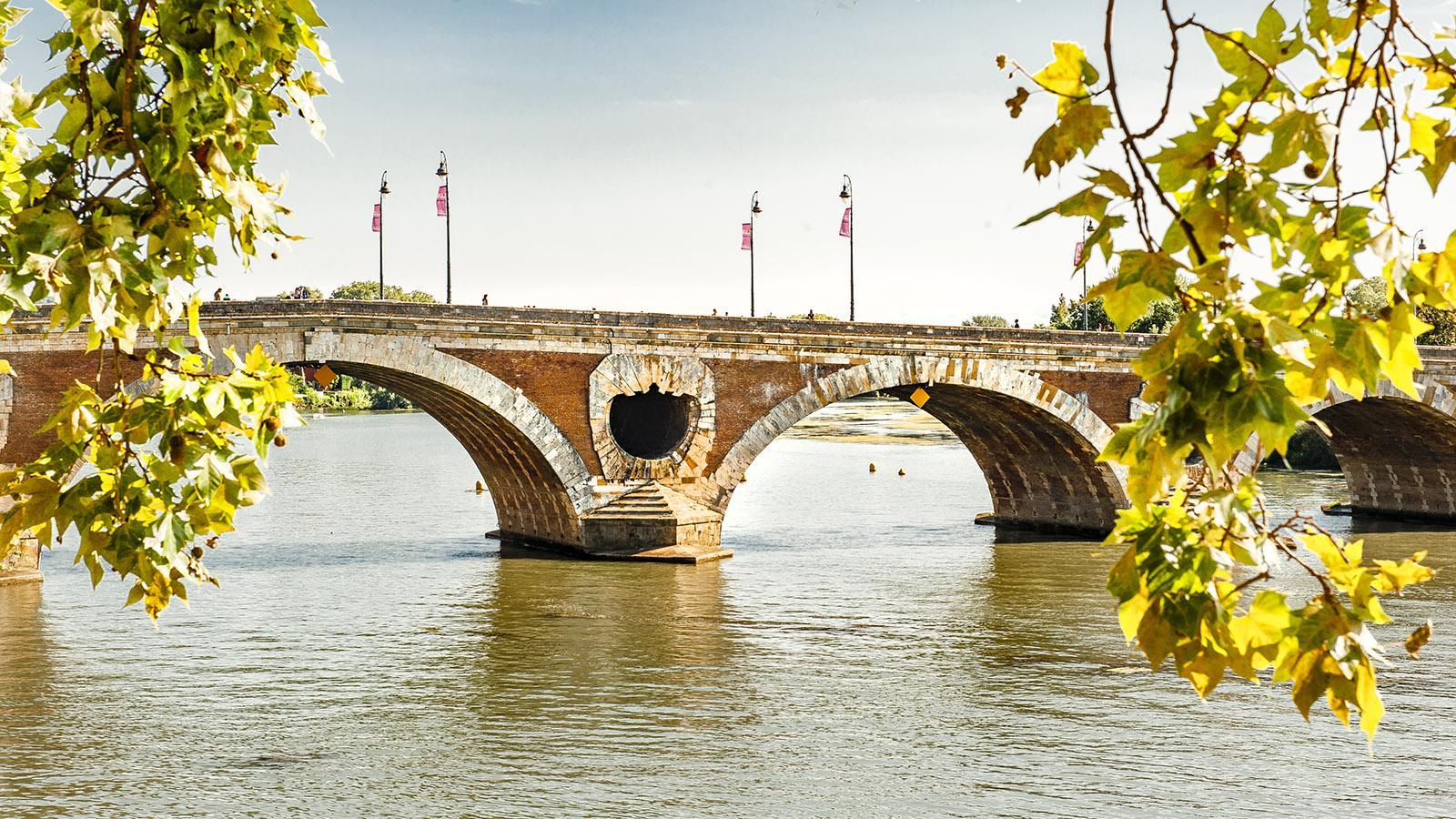Toulouse: Pont Neuf. Foto: Hilke Maunder