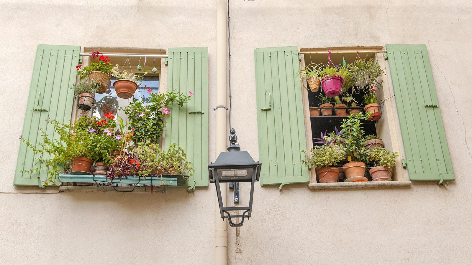 Céret: Blumenschmuck in der Altstadt. Foto: Hilke Maunder