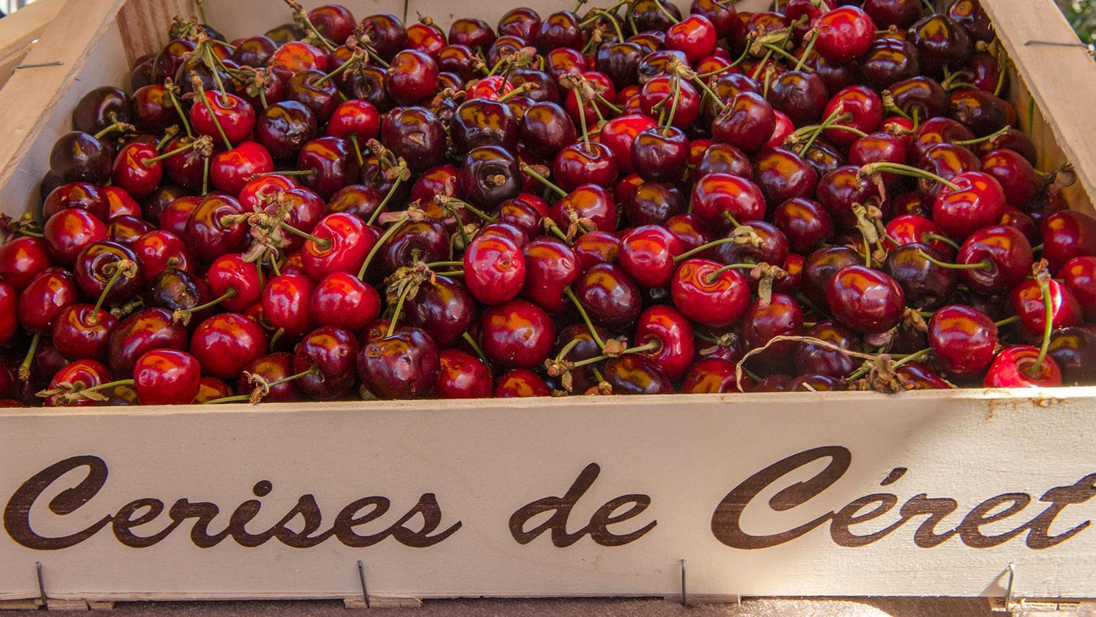 Die ersten Kirschen des Jahres kommen in Frankreich traditionell aus Céret. Foto: Hilke Maunder