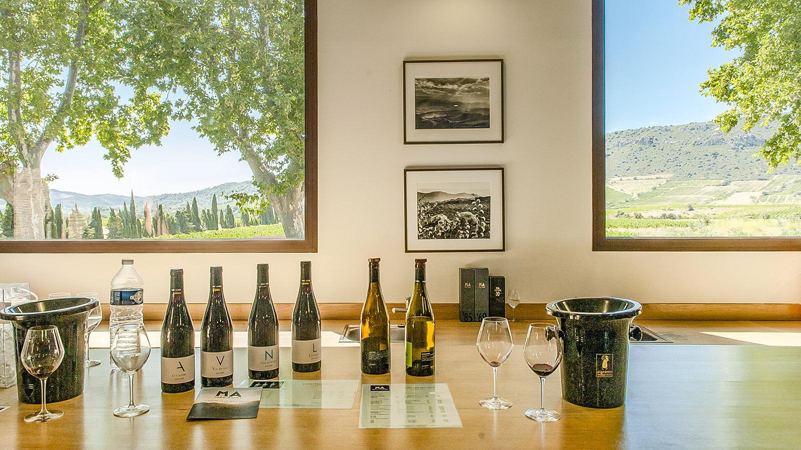 Der Verkostungsraum von Mas Amiel eröffnet weite Ausblicke auf die Weingärten im Agly-Tal. Foto: Hilke Maunder