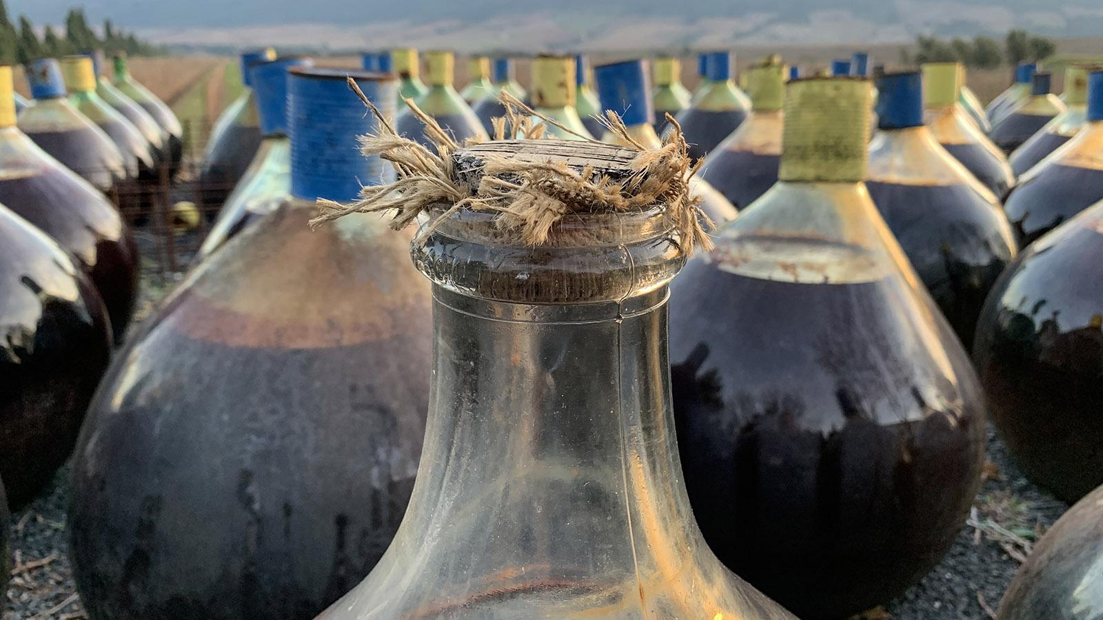 Mas Amiel: In den Dames-Jeannes können die Süßweine atmen und oxidieren. Foto: Hilke Maunder