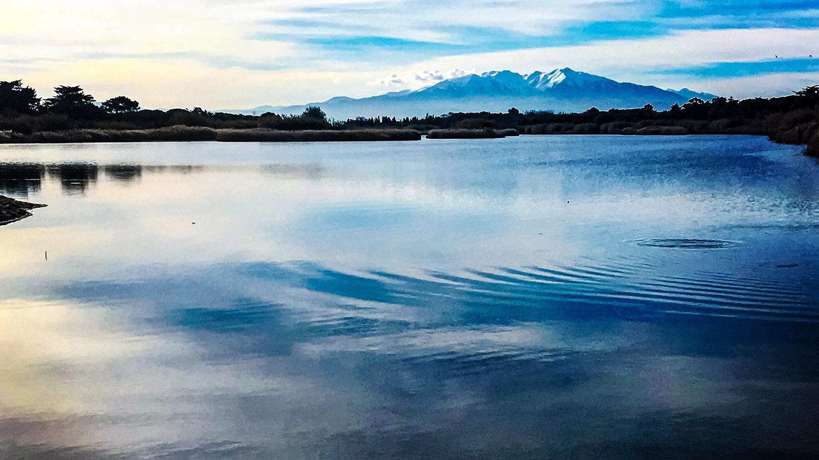 Die Mündung des Agly mit dem Canigou. Foto: Hilke Maunder