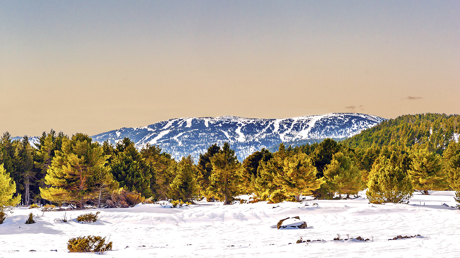 Winter auf dem Capcir. Foto: Hilke Maunder