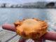 Sète: Die tielle sétoise birgt ein köstliches Innenleben! Foto: Hilke Maunder
