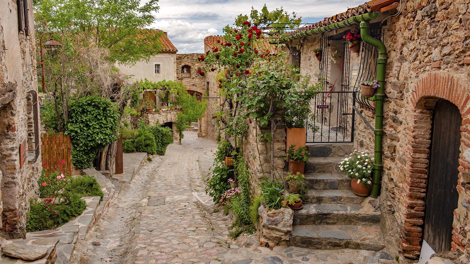 Grober Feldstein und bunte Blumen: Castelnou! Foto: Hilke Maunder